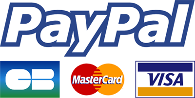 logo paypal pay for transferts in paris